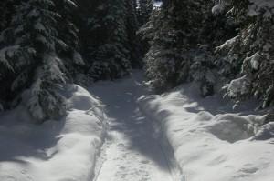 464119_3109671793587_544622311_o-300x199 Course de raquettes à neige